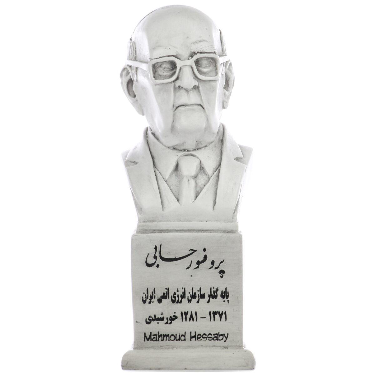 سردیس پروفسور محمود حسابی