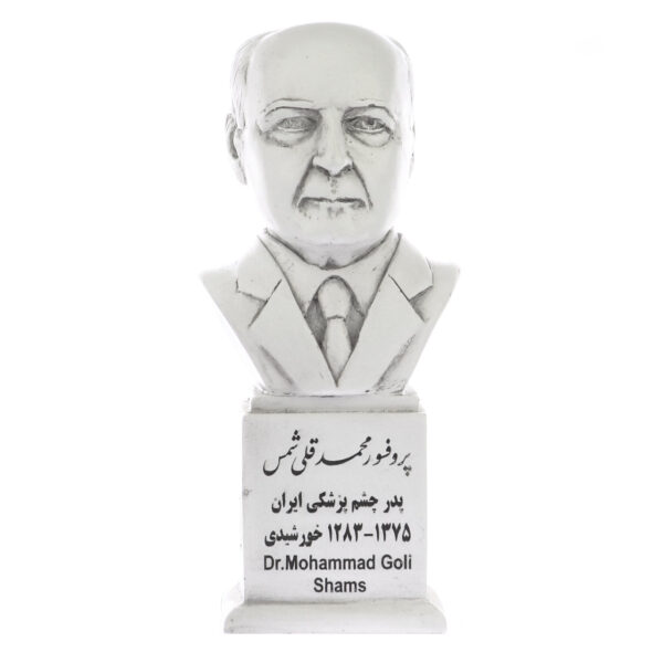 dr mohammad goli shams s 600x600 - سردیس پروفسور محمدقلی شمس