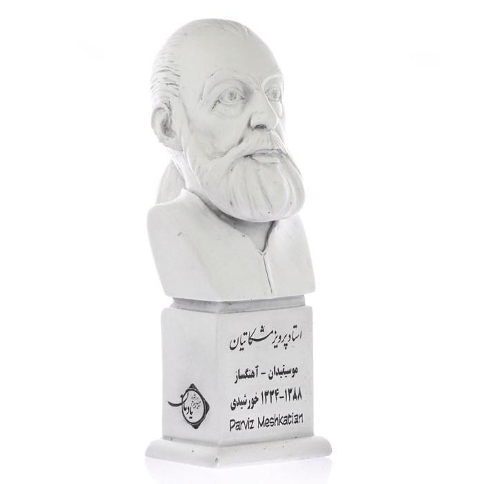 parviz meshkatian 1 - سردیس پرویز مشکاتیان